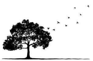 木と飛んでいる鳥のシルエットのイラスト素材 [FYI04568478]