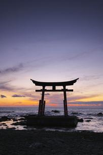 金比羅神社の鳥居と夕景の写真素材 [FYI04568833]