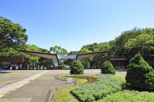 国営昭和記念公園西国立口の写真素材 [FYI04568942]