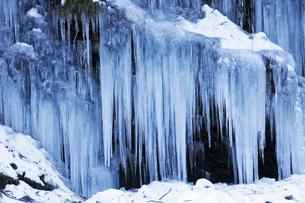 1月 秩父三十槌(みそつち)の氷柱の写真素材 [FYI04569006]