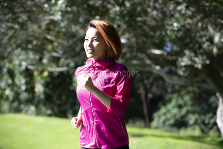 公園でランニングをしている女性の写真素材 [FYI04569008]