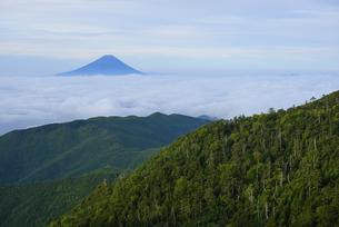 国師ヶ岳より夜明けの富士山の写真素材 [FYI04569799]