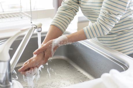手洗いをするシニアの手元の写真素材 [FYI04569917]
