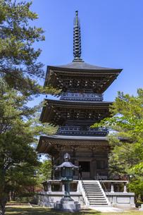 能登長寿大仏 三重塔の写真素材 [FYI04570230]