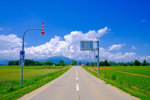 青空と道の写真素材 [FYI04570397]