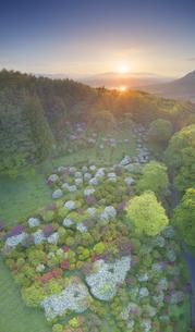 穴平のツツジと朝日に輝く田園と浅間山遠望の写真素材 [FYI04570468]