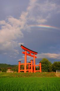 生島足島神社の大鳥居と夕方の虹の写真素材 [FYI04570612]