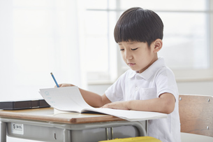 勉強する小学生の男の子の写真素材 [FYI04570822]