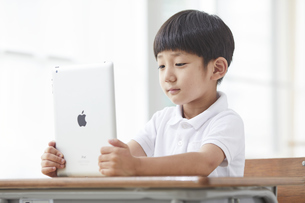 タブレットPCを見る小学生の男の子の写真素材 [FYI04570853]