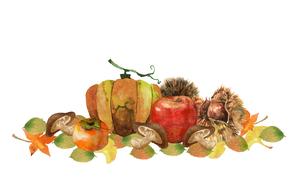 秋の味覚水彩画のイラスト素材 [FYI04570992]