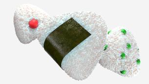 Various of rice balls.のイラスト素材 [FYI04571082]
