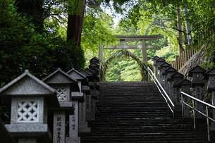 有馬温泉湯泉神社茅の輪の写真素材 [FYI04571281]
