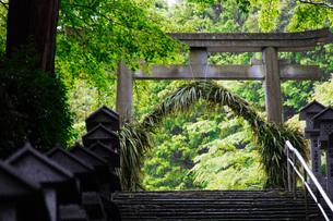 有馬温泉湯泉神社茅の輪の写真素材 [FYI04571282]