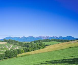 北海道 自然 田園風景 美瑛の写真素材 [FYI04571922]