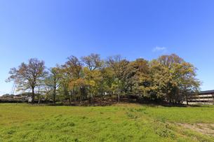 太田 女体山古墳の写真素材 [FYI04572249]