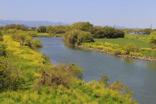 越辺川の写真素材 [FYI04572294]