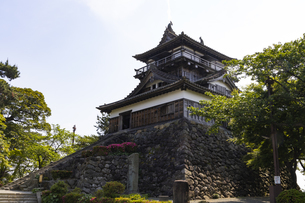 丸岡城の写真素材 [FYI04572961]