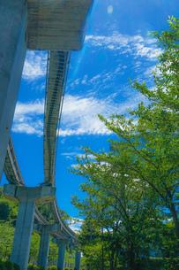 多摩モノレールのレールと晴天の空(多摩動物公園駅)の写真素材 [FYI04573598]