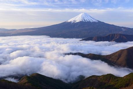 山梨県 広がる雲海と富士山の写真素材 [FYI04573825]
