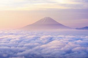 山梨県 雲海に浮かぶ富士山の写真素材 [FYI04573840]