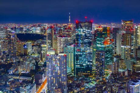 東京都港区からの東京スカイツリーと東京の夜景の写真素材 [FYI04574168]