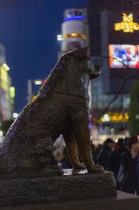 東京都 渋谷センター街 ハチ公像の写真素材 [FYI04574355]