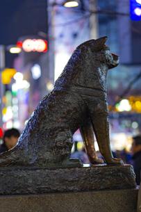 東京都 渋谷センター街 ハチ公像の写真素材 [FYI04574383]