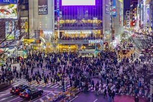 東京都 渋谷区 渋谷スクランブル交差点の夜景の写真素材 [FYI04574386]