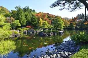 青空の好古園,御屋敷の庭の写真素材 [FYI04575111]