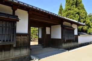 青空の好古園,松の庭入口の写真素材 [FYI04575464]
