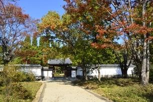 青空の好古園,御屋敷の庭入口の写真素材 [FYI04575474]