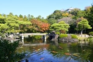 青空の好古園,御屋敷の庭の写真素材 [FYI04575624]