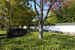 姫路城西御屋敷跡庭園,好古園の写真素材 [FYI04575626]