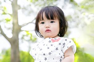新緑の木々を背景に見つめる幼い女の子の写真素材 [FYI04575993]