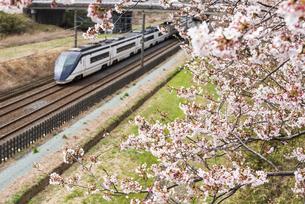 桜並木と京成成田空港線スカイライナーの写真素材 [FYI04576051]