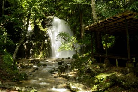 寿老の滝の写真素材 [FYI04576469]