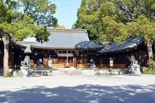 青空の姫路護国神社本殿の写真素材 [FYI04576648]