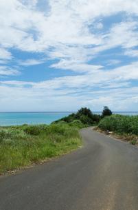 エメラルドグリーンの水平線の見える海と蛇行した道の写真素材 [FYI04576736]