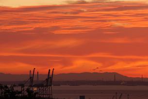 朝焼けに染まる四日市港のコンテナクレーンの写真素材 [FYI04576858]