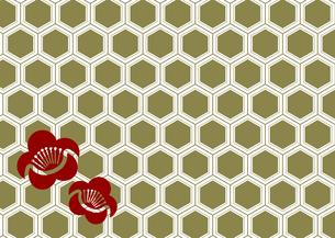 年賀状、結婚式などに使える亀甲柄に梅の模様をあしらった和柄背景素材のイラスト素材 [FYI04576944]
