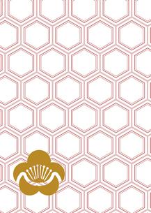 年賀状、結婚式などに使える亀甲柄に梅の模様をあしらった和柄背景素材のイラスト素材 [FYI04576954]