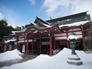 福井県敦賀市 雪の気比神宮の写真素材 [FYI04577343]