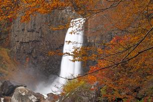 11月 紅葉の苗名の滝  -甲信越の滝-の写真素材 [FYI04577812]