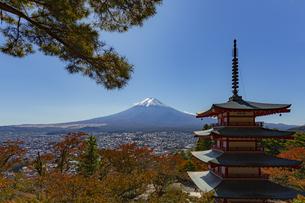 山梨県 富士吉田市 新倉山浅間公園からの秋の富士山の写真素材 [FYI04577850]
