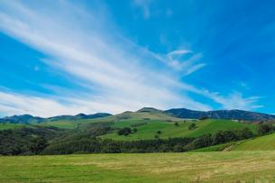 北海道上士幌町、放牧された牛が遠望できるナイタイ高原牧場の広大な風景ですの写真素材 [FYI04577869]