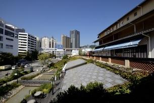 神戸,ハーバーランドモザイクからの街並みの写真素材 [FYI04578364]