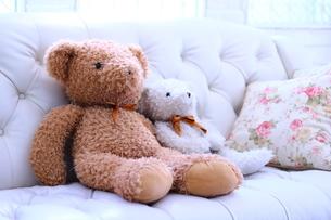 ソファーに座るくまのぬいぐるみの写真素材 [FYI04578866]