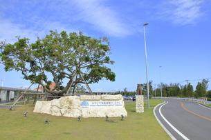 みやこ下地島空港ターミナルの写真素材 [FYI04579270]