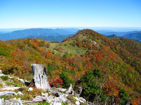 奈良県と三重県の県境 桧塚奥峰の紅葉の写真素材 [FYI04579615]