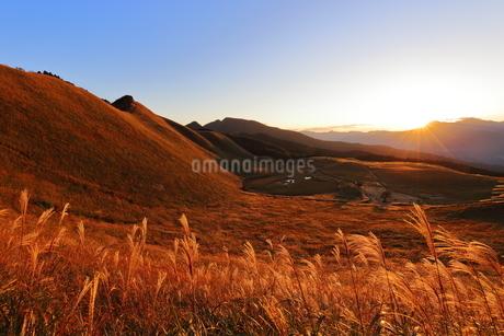 奈良県曽爾高原の夕日に輝くススキの写真素材 [FYI04579617]